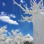 frost-magical-ice-of-siam-11