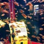 Coex-Aquarium-03