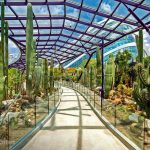 gardens-by-the-bay-tickets-05