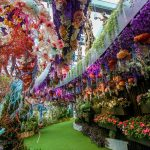 gardens-by-the-bay-tickets-09